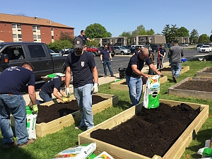 Filling the newly constructed raised beds